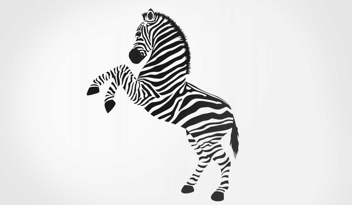 OPŠ 337: Zebra