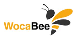 WocaBee prináša na školy revolúciu v učení cudzích slovíčok