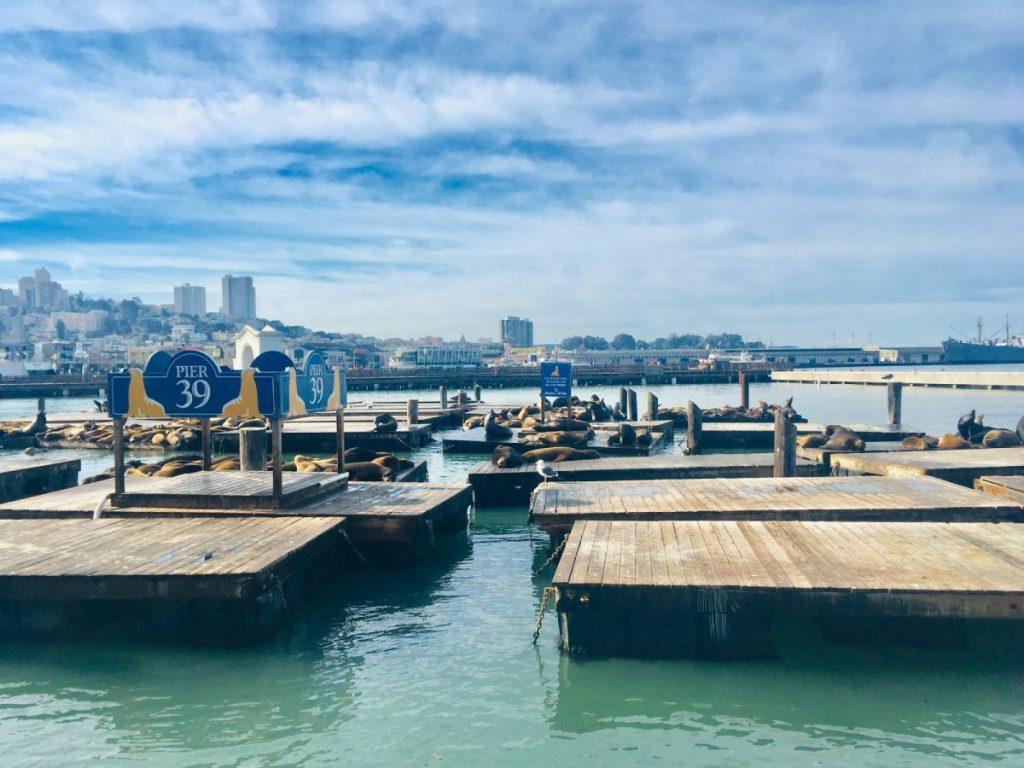 Mólo Pier 39, San Francisco